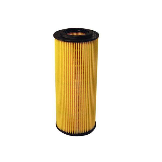 FILTRON filtr oleju OE670/1 - Alfa Romeo, Fiat Croma II 2.4 jtd 05-