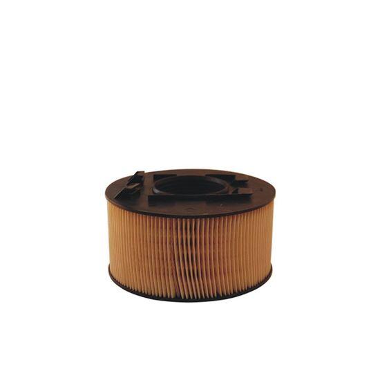 FILTRON filtr powietrza AK362/2 - BMW 3 (E46) 316iCi 318iCi 04.01-